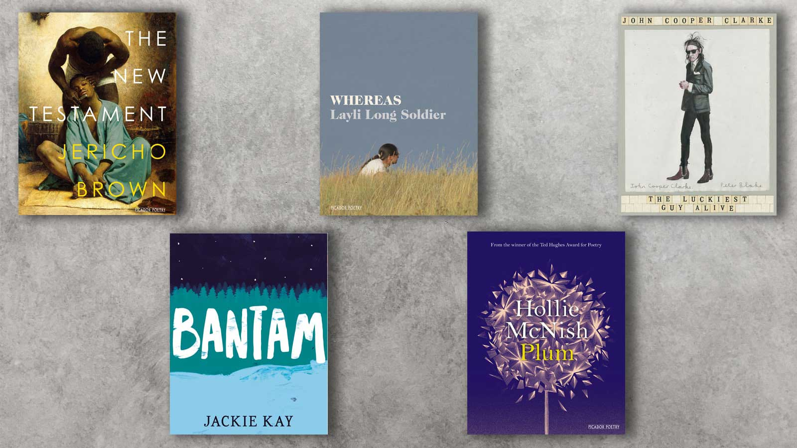Covers of The New Testament, Whereas, Bantam, Plum and The Luckiest Guy Alive on a grey concrete background